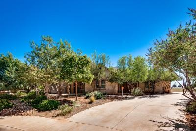 Midland Single Family Home For Sale: 6519 Los Conchos Lane