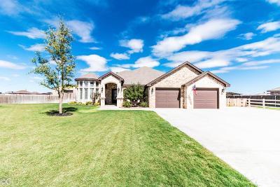 Midland Single Family Home For Sale: 7303 E County Rd 93