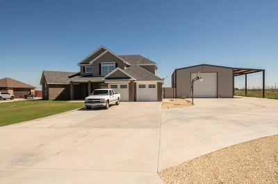 Midland Single Family Home For Sale: 2506 N County Rd 1275