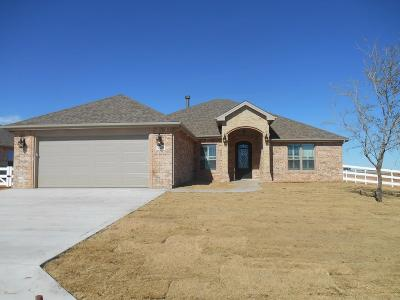 Midland Single Family Home For Sale: 7419 E County Rd 96
