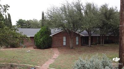 Midland Single Family Home For Sale: 7209 E County Rd 110