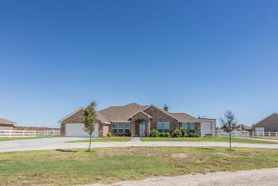 Midland Single Family Home For Sale: 2601 S County Rd 1089