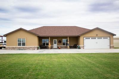 Midland Single Family Home For Sale: 4707 E County Rd 60