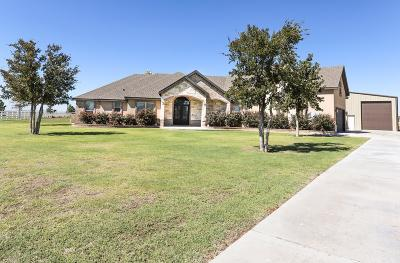 Midland Single Family Home For Sale: 6405 E County Rd 109