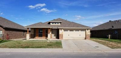 Midland Single Family Home For Sale: 602 Wagner