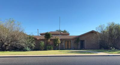 Odessa TX Single Family Home For Sale: $495,000