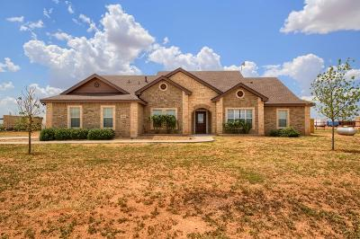 Midland Single Family Home For Sale: 5610 S County Rd 1213