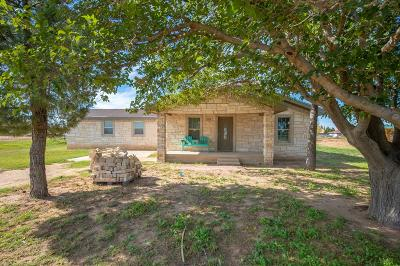 Midland Single Family Home For Sale: 3608 S County Rd 1195