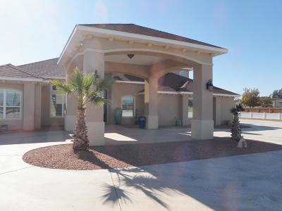 Midland Single Family Home For Sale: 6613 Cactus Trail