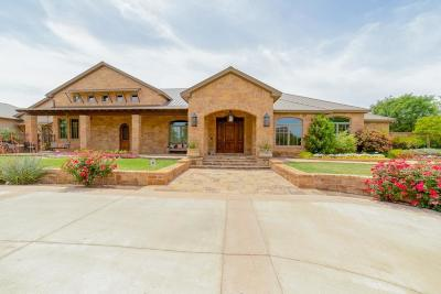 Midland Single Family Home For Sale: 5307 Alysheba