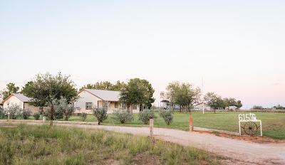 Midland Single Family Home For Sale: 615 E County Rd 150