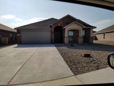 Midland Single Family Home For Sale: 6719 N Yellow Rose Ct