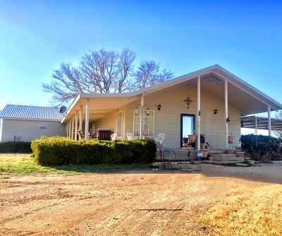 Stanton Single Family Home For Sale: 1941 S County Rd C3101
