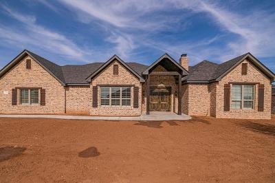 Midland Single Family Home For Sale: 7119 E County Rd 113