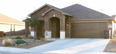 Midland Single Family Home For Sale: 1200 Wrangler Lane