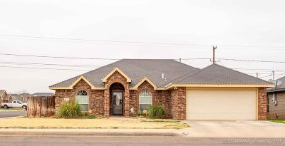 Midland Single Family Home For Sale: 5206 Anetta Dr