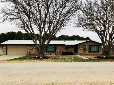 Midland Single Family Home For Sale: 2107 S County Rd 1086