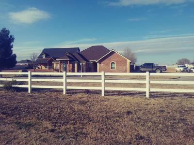 Midland Single Family Home For Sale: 1906 W County Rd 140