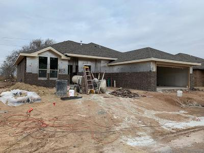 Midland Single Family Home For Sale: 803 Chaparral St