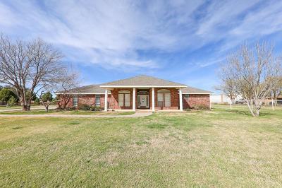 Midland Single Family Home For Sale: 5709 E County Rd 97