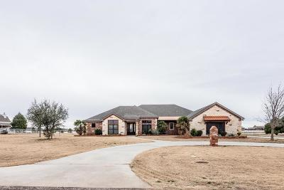 Midland TX Single Family Home For Sale: $830,000