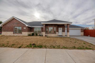 Midland Single Family Home For Sale: 500 Liddon