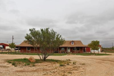 Stanton Single Family Home For Sale: 2631 E Fm 1212