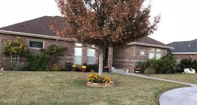 Odessa TX Single Family Home For Sale: $415,000