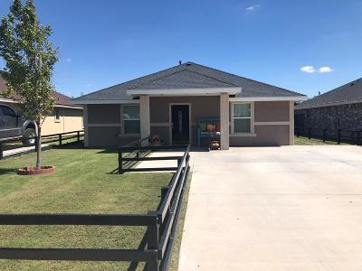 Midland Single Family Home For Sale: 806 N Dallas St