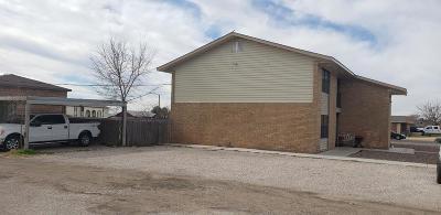 Midland TX Rental For Rent: $1,150