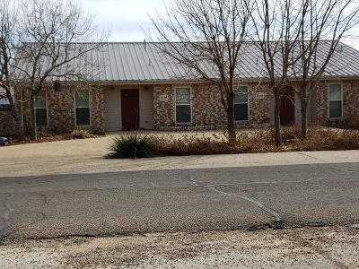 Odessa TX Multi Family Home For Sale: $408,000