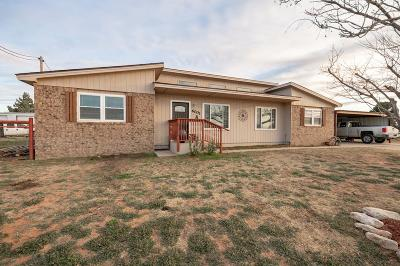 Midland Single Family Home For Sale: 6001 S County Rd 1285a