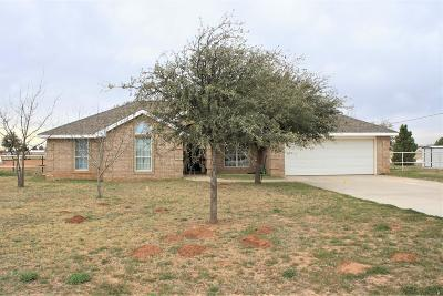 Midland TX Single Family Home For Sale: $415,000