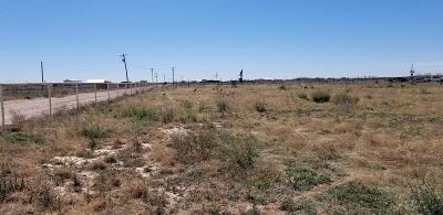 Midland Residential Lots & Land For Sale: 1601 N County Rd 1068
