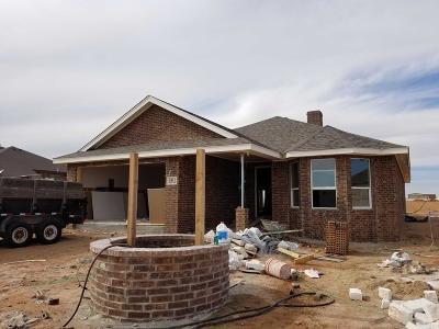Midland Single Family Home For Sale: 7411 E County Rd 96