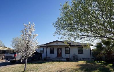 Midland Single Family Home For Sale: 1409 S Terrell St