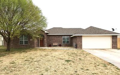 Midland Single Family Home For Sale: 2805 S County Rd 1068
