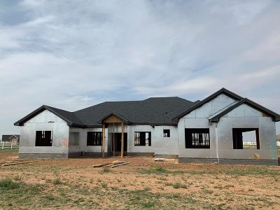 Midland Single Family Home For Sale: 13009 E County Rd 116