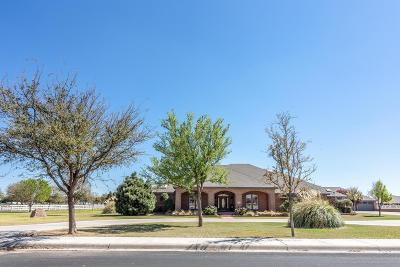 Midland Single Family Home For Sale: 3101 Palo Verde Dr