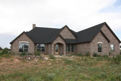 Midland Single Family Home For Sale: 3107 S County Rd 1057