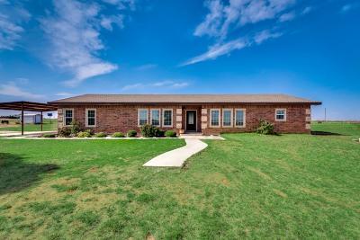 Midland Single Family Home For Sale: 711 E County Rd 146
