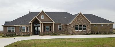 Midland Single Family Home For Sale: 3800 Timber Wolf Trail