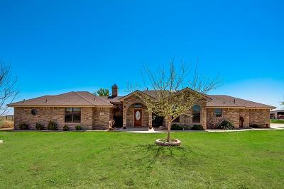 Midland Single Family Home For Sale: 12304 E County Rd 114