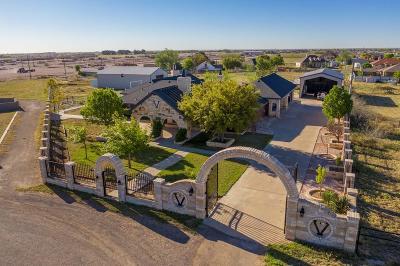 Midland Single Family Home For Sale: 1312 E County Rd 126