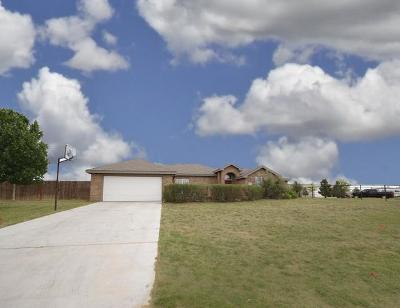 Midland Single Family Home For Sale: 3003 S County Rd 1068