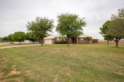 Midland Single Family Home For Sale: 12811 E County Rd 103