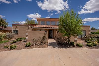 Midland TX Single Family Home For Sale: $435,000