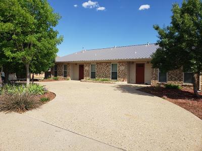 Odessa Multi Family Home For Sale: 6118 Denis Lane