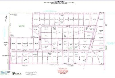 Midland Residential Lots & Land For Sale: 8600 N County Rd 1150