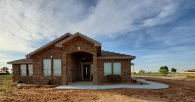 Single Family Home For Sale: 11915 Fm 307